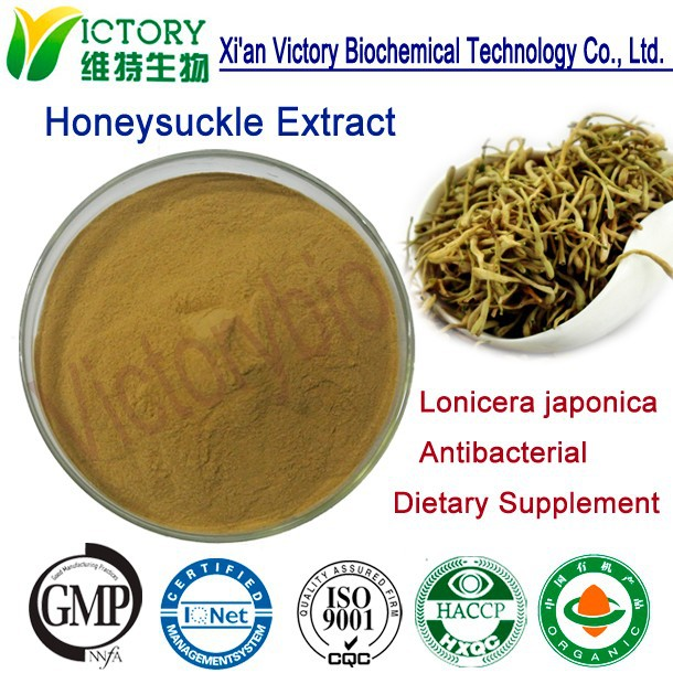 solvent extration chlorogenic acid flos lonicerae extract
