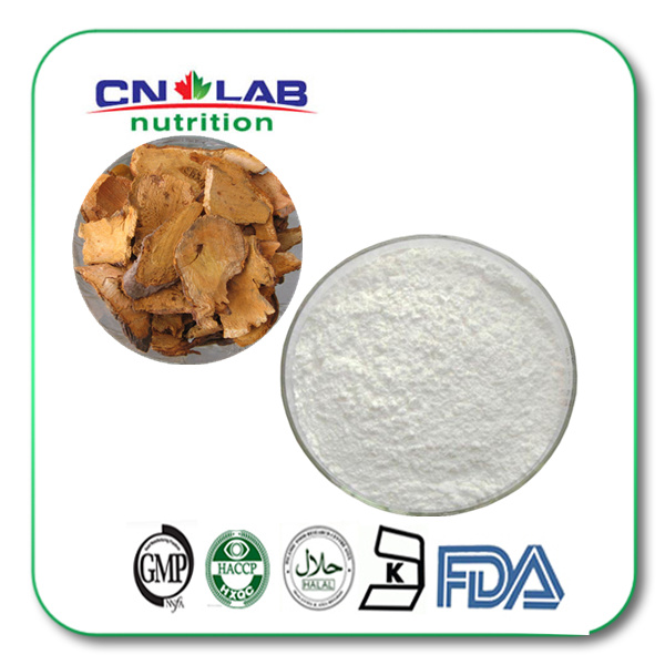 Top Grade Herbal Extract Polydatin 98% Extract Powder