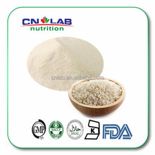 GMP Plant Enzymolysis Organic Rice Protein Isolate Powder in Bulk Supply