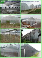 Agricultural Plastic Greenhouse on Sale