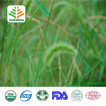 Health Product Horsetail Grass Extract 7.0% Organic Silica Test by UV