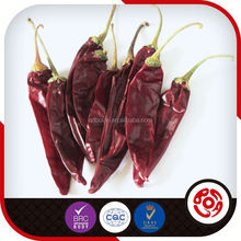 334 Sannam Dried Hot Red Chili Top Exporter