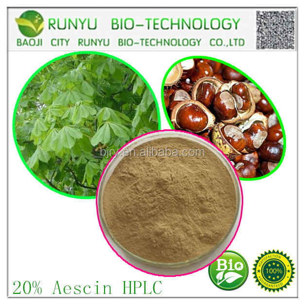 Natural herbal extract factory direct horse chestnut extract aescine powder 20% by high performance liquid chromatography