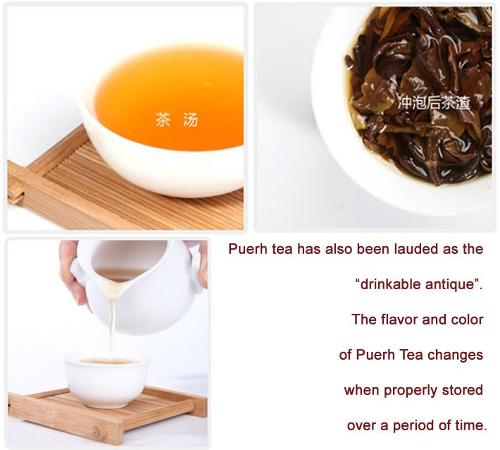 TOP HOT BEST SHINING HERB KUNGFU FREE SHIPPING AND GIFT PACKING 50PCS ORGANIC YUNAN OLD PUERH TEA 10 DIFFERENT KINDS FLAVORS