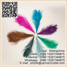 Craft Cheap Fully Eye Dyed Colors Peacock Tail Feather