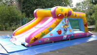 Commercial inflatable castle slide cheap inflatable water slides for sale M4010