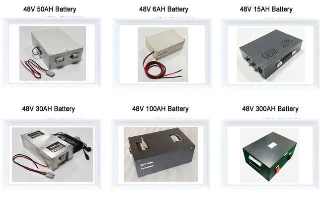 1000W 48v lithium ion battery electric bike battery 48v 20ah