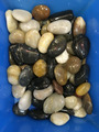 patio mixed pebble stone import