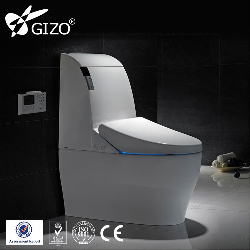 Ceramic Electric Toilet Warm Wind Dryer Sitting Toilet Factory