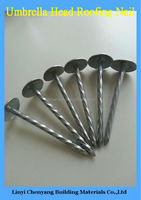 China Roofing Nails, Corrugated Roofing Nails, Common Nail Iron Nail Factory