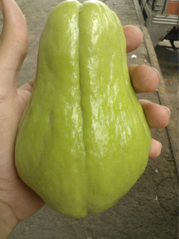 Vegetable pear