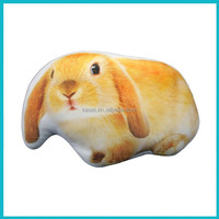 3D Digital Printed Plush Decorative Cushion Filled with Microfiber