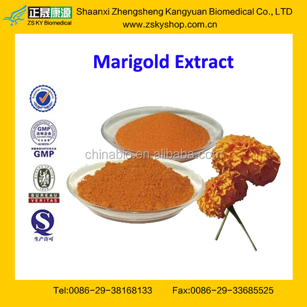 GMP Factory Supply Free Sample Lutein Powder Marigold Plant Extract