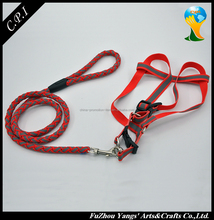 Wholesale retractable reflective Dog Collars and Dog Leash