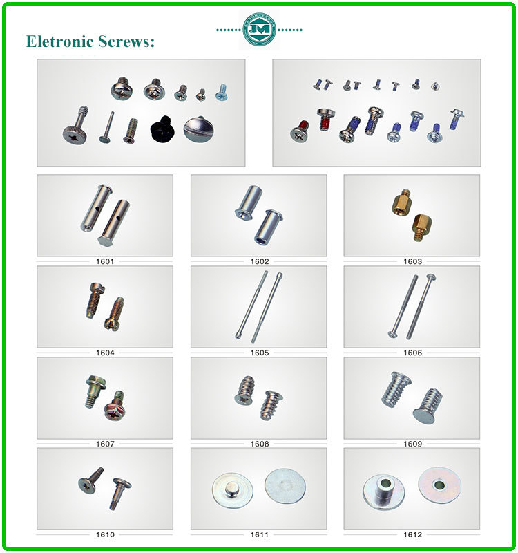 Stainless steel hexagon head screws for decoration