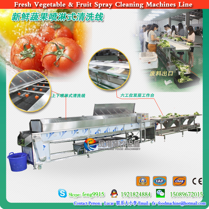Fresh vegetables, fruit selection and sorting cleaning machines line 2016