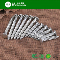 stainless steel SS304 Truss head spiral shank steel concrete nails