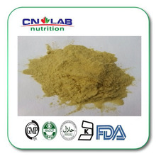 Natural Animal Extracts Ox Bile Powder Pharmaceutical Grade Yellowish-brown Powder
