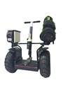 "Green power 19"" off-road golf self-balancing electric scooter for sale"