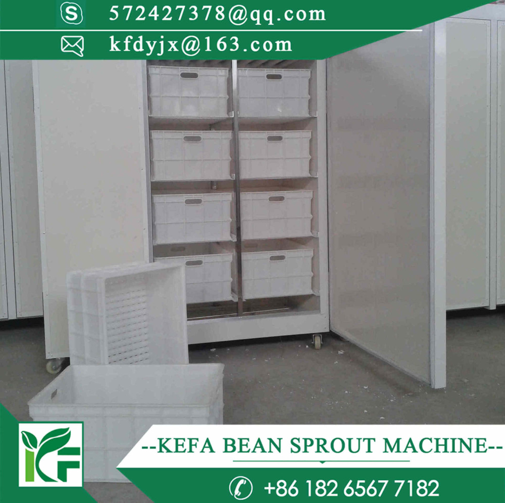 cheap and fine bean sprout machine / korean bean sprout / bean sprout