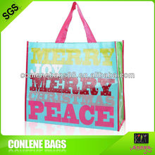 Shopping bag fabbrica( conlene borsa)