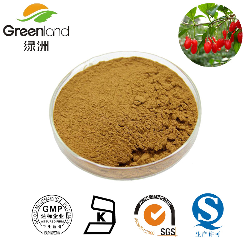 Greenland Barbury Wolfberry fruit Extract 20% polysaccharide