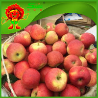 New season red star apple golden delicous apple
