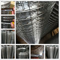 Anping Cheap welded wire mesh, galvanized welded wire mesh (I - 049)