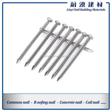 HOT SALE common nails/wire nail use for wooden nail