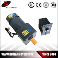 220V AC Variable Speed Electric Motor with Controller