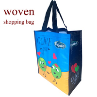tote custom reusable standard size pp shopping bag wholesale cheap pp woven reusale shopping bag