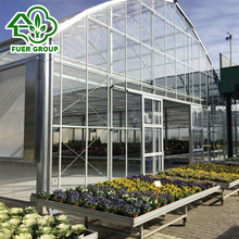 Large automatic tunnel plastic film greenhouse equipment