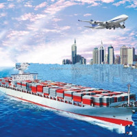 Professional Sea Shipping Transportation From China