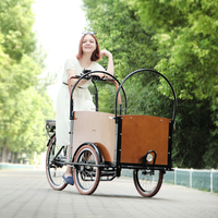 CE Holland bakfiets family 6 speed electric recumbent trike cargo bicycle for shopping