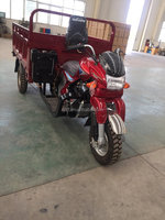 2016 best quality 3 wheel motorcycle /gasoline trike for cargo and passenger
