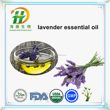 Lavender Extract , Lavender Flower Essential Oil Wholesale