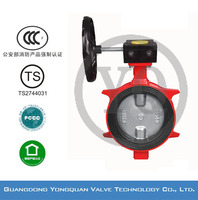 "ZSDF-B Worm Gear Operated Lug Type Concentric Rubber Lined Butterfly Water Valve, DN 2""-12"", PN 1.6/2.5 MPa, with CCCf and TS"
