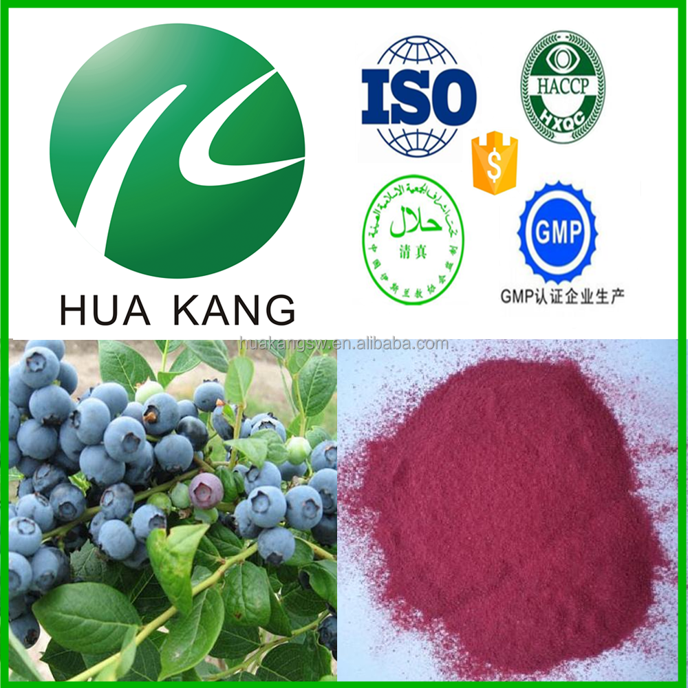 Antioxidants blueberry leaf extract,herbal medicine blueberry 50% anthocyanin, GMP blueberry juice powder