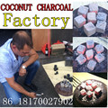 Tom Cocobrico Coconut Shell Charcoal Cubes