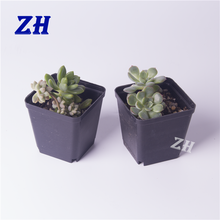 small soft plastic flower and succulent nursery plant pot