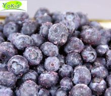 Chinese IQF canned wild blueberries for sale