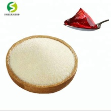 Food grade halal fish low price gelatin powder 240 bloom gelatin powder