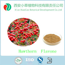 Best sale pure natural hawthorn fruit extract,hawthorn berry powder