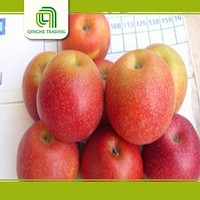 bulk cheap fresh fruit red delicious qinguan apple with paper bag