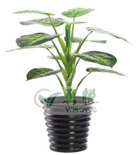 Yongyue brand 70 cm height cheap single stem 12 leaves evergreen tree