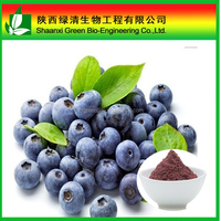 Blue Berry Extract 25% anthocyanidins 35% Anthocyanins EP