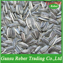 Chinese Sunflower Seeds5009 /363