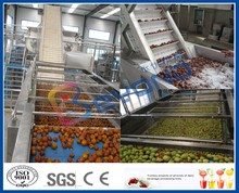 dates processing machinery