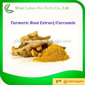 For function foods and beverages Turmeric Extract/Curcuma Extract/Curcumin Powder 95%