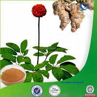 Panax notoginseng saponins in stock/Chinese herb medicine raw material